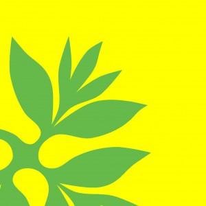 Tifaifai Pfingstrose gelb grün - ©miachammas 2014
