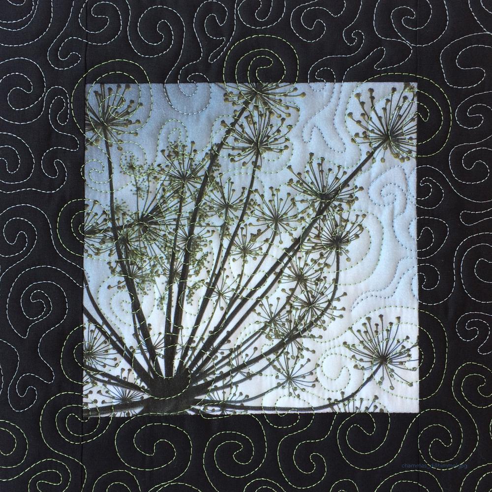 Miniquilt Foto Dill im Gegenlicht, gequiltet mit Spiralen